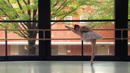 Strength and Beauty - The Complex Lives of Professional Ballerinas